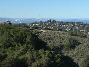 Beautiful Belmont Hills